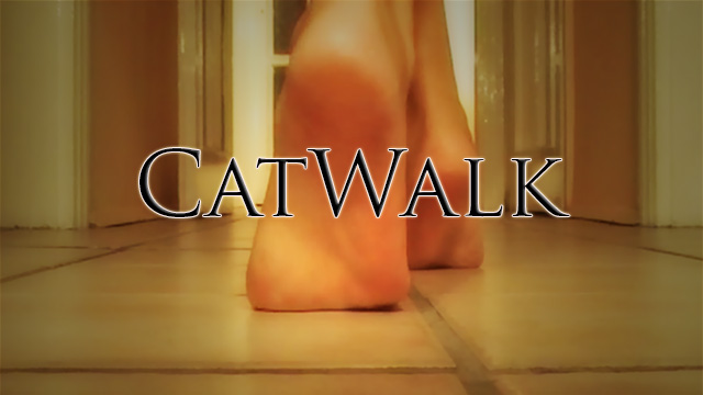 <p>Ashli Passion catwalks barefoot in nylons</p>